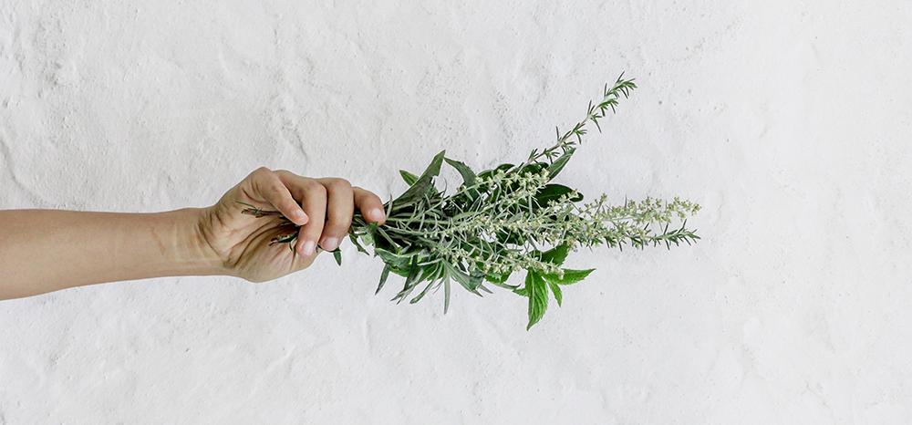 Você já conhece o sal de ervas?